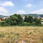 Greenfield plot